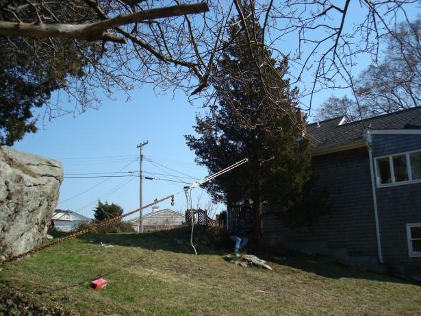 2010-3-21 Pine tree take down 003